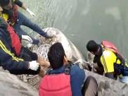 सामने से आ रहे ट्रक से बचने के लिए नहर में गिरी कार, डूबने से 3 की मौत, दो ने बचाई जान