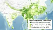 भारत में हर साल 10 हजार वर्ग किमी जमीन हो रही बंजर