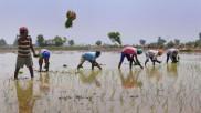पिछले 10 साल में देश के किसानों का माफ हुआ 4.7 लाख करोड़ रुपये का कर्ज