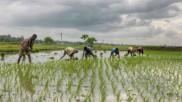 भूमिहीन किसानों को 7 लाख का लोन देगी ओडिशा सरकार, जानिए योजना से जुड़ी हर बात