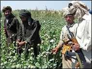 नशे की गिरफ़्त में अफ़ग़ान पुलिस