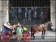 रोम में लगी तांगे पर रोक