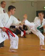 लंदन ओलंपिक 2012 में कराटे भी