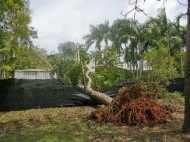 अमेरिका में तूफान से 116 की मौत