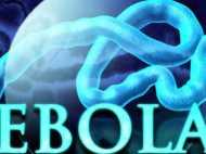15 मिनट में गंभीर बीमारी इबोला से मिलेगा छुटकारा