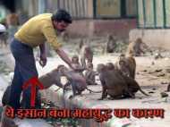 Short Story: जब मोटे बंदर ने निकाली रात की भड़ास