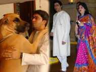 राज ठाकरे के वफादार कुत्ते ने उनकी पत्नी शर्मिला के चेहरे को बुरी तरह काट खाया