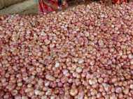मध्य प्रदेश सरकार अब मुफ्त बेचेगी प्याज, गिरते दाम से है परेशान