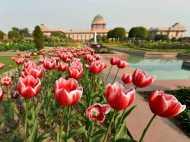 दिल गार्डेन... गार्डेन करना है तो जाएं मुगल गार्डन, जानें क्यों हैं ये खास