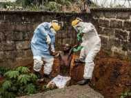 इबोला का नया वर्जन आया, सुअर बन सकते हैं मौत का कारण