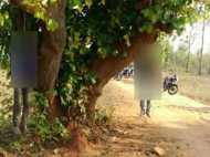 झारखंड: भैसों को ले जा रहे दो मुस्लिमों को मारा-पीटा और फिर फांसी दे दी
