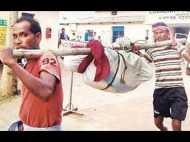 ओडिशा फिर शर्मसार: विधवा की लाश को कमर से तोड़ा फिर बांस पर लटकाकर ले गए