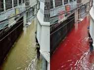 जानें क्या है बंग्लादेश में खून की नदी का पूरा सच ?