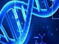 भारतीय वैज्ञानिकों ने विकसित की नई तकनीक,बड़ी दुर्घटनाओं में आसानी से पता चल सकेगा DNA