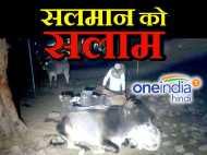सलमान ने पेश की मिसाल, सर्द रातो में गायों को ठंड से बचाने के लिए जागते हैं