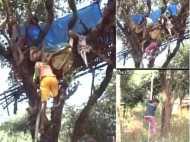 झारखंड: हाथियों के डर से पेड़ पर रहने को मजबूर हैं कई परिवार