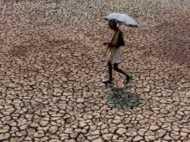 मोदी सरकार के दो साल में 42 फीसदी बढ़ गई किसान आत्महत्या, महाराष्ट्र का हाल सबसे बुरा