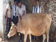 योगी के अभियान को मिला तकनीकी बल, अब नहीं हो पाएगी गायों की तस्करी