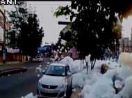 बेंगलुरू में बारिश के बाद 'जहरीली बर्फ', की बरसात, आखिर क्या है ये आफत?