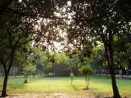 रामवृक्ष के जलाए जवाहर बाग को बनाया जाएगा 'डेट डेस्टिनेशन'