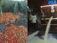 महाराष्ट्र में किसानों की हड़ताल, शहरों में नहीं पहुंचने देंगे सब्जी और दूध