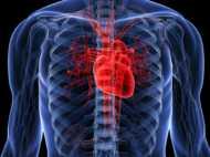 चमत्कार! वैज्ञानिकों ने किया कृत्रिम दिल का निर्माण, रॉकेट तकनीक की सहायता से हुआ मुमकिन