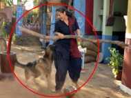 शूटिंग के दौरान बेकाबू हुआ विदेशी नस्ल का कुत्ता, मशहूर एक्ट्रेस पर किया हमला