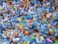 2025 तक दुनिया भर के समुद्र में जमा हो जाएगा 250 मिलियन टन प्लास्टिक
