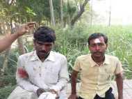 सीतापुर में कुत्तों के बाद तेंदुए की दहशत, हमले में छह लोग घायल