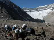 Kailash Mansarovar Yatra: खराब मौसम के चलते सिमिकोट में फंसे 200 तीर्थयात्री