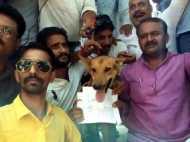 सर्वणों ने किया एससी-एसटी एक्ट के खिलाफ प्रदर्शन, कुत्ते के गले में डाली सांसद के नाम की तख्ती