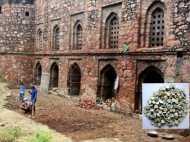 मस्जिद में खुदाई कर रहे मजदूरों को मिला 'खजाना', ASI ने इलाके को घेरा