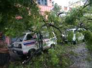 गाजा तूफान ने तमिलनाडु में मचाई तबाही, अब तक 11 लोगों की मौत, देखें तस्वीरें