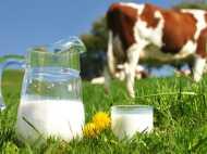 दिल्ली-एनसीआर में 120 रुपए लीटर दूध बेचेगी पराग, महंगा होने की ये है वजह