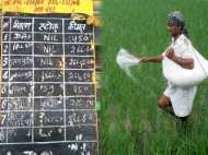 Rajasthan : यूरिया संकट बरकरार, खाद की दुकानों से मायूस लौट रहे किसान