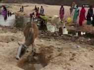 छत्तीसगढ़ के इस गांव में एक ही तालाब का पानी पीने को मजबूर इंसान और जानवर
