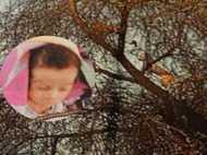 19 साल बाद जुड़वा बच्चों से भरी सूनी गोद, एक नवजात बेटे को बिलाव उठा ले गया