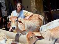 25 साल से बीमार गायों की सेवा कर रहीं जर्मनी की इरिना को मिली भारत में और रहने की इजाजत