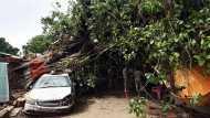 बिहार: बिजली गिरने से 17 की मौत, पटना में बारिश के चलते पेड़ गिरा, 10 पुलिसकर्मी घायल