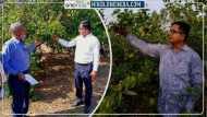 Lemon man raebareli: MNC में 11 लाख की जॉब छोड़कर नींबू से छप्परफाड़ कमाई कर रहे आनंद मिश्रा