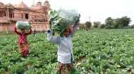 नज़रिया: 'सबका साथ-सबका विकास में किसान शामिल क्यों नहीं?'