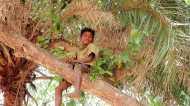 बस्तरः जहां विकास शब्द विस्थापन का पैग़ाम लेकर आता है