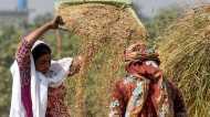 पंजाब सरकार की ओर से लाए तीन नए कृषि विधेयकों में क्या है