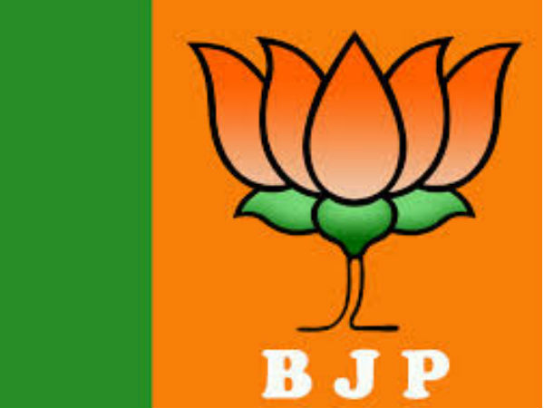 It's not a defeat, party committed suicide in Bihar, says BJP MP