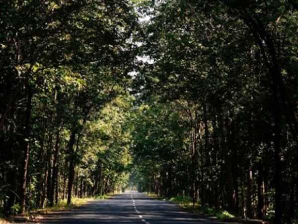 पत्नी के शव और नवजात के साथ शख्स को बीच जंगल में बस से उतारा