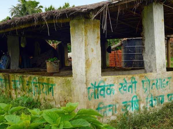 बिहार दिखा रहा कृषि क्रांति की राह, केड़िया गांव बन रहा जैविक खेती का  चैंपियन | Kedia village of Bihar revolutionized organic farming - Hindi  Oneindia