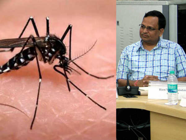 Delhi Health Minister terms dengue mosquito as royal mosquito