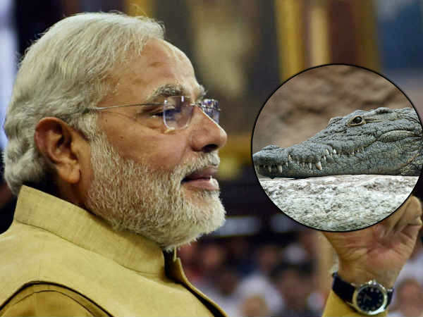 Birthday Special: 'Fearless Narendra Modi brought home a crocodile'