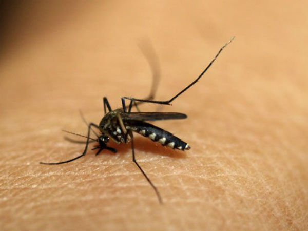 Home remedies for joint pain after Chikungunya