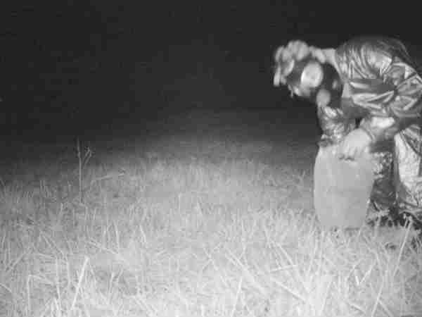शेर का शिकार करने निकली पुलिस, हाथ लगा कुछ और ही, देखें तस्वीरें